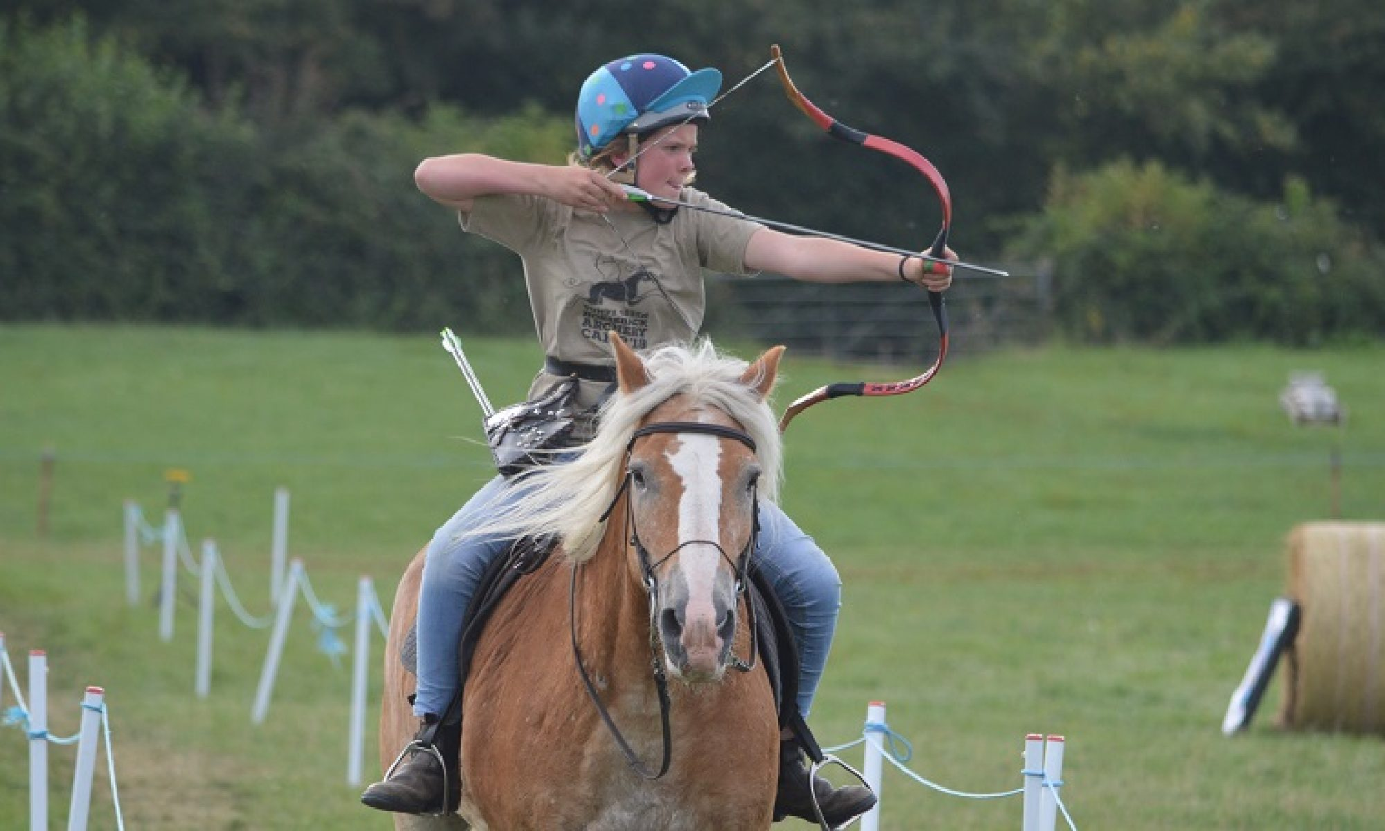 Cotteswold Mounted Archers